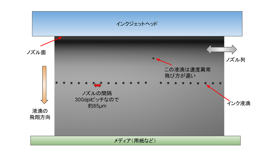観察画像の解説図 (1)